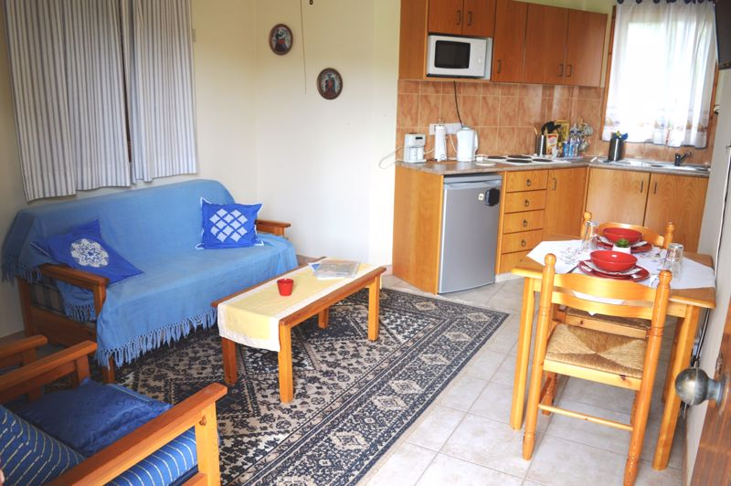 1 bedroom apartment open plan