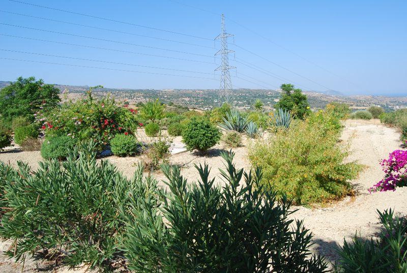 Immaculate surrounding gardens