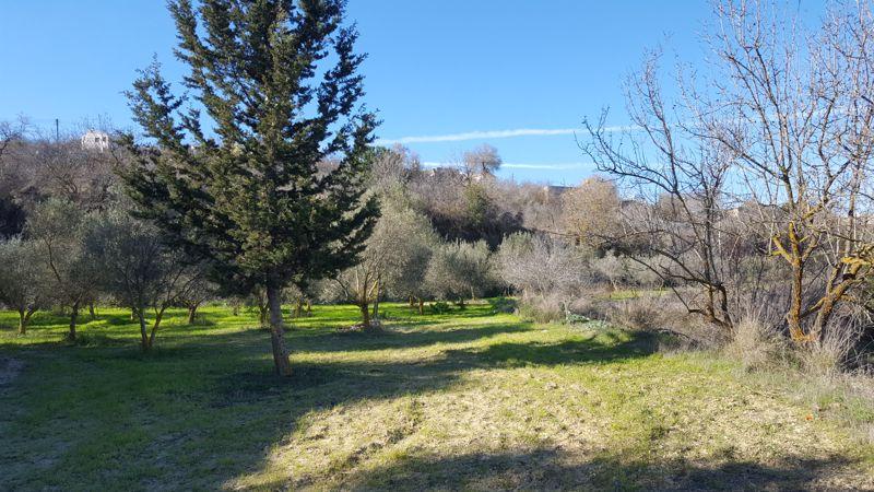 land-paphos-for-sale