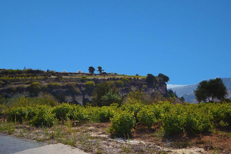 View of Kathikas