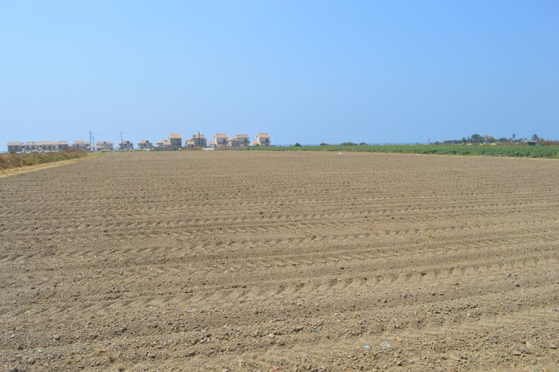 Ploughed plot