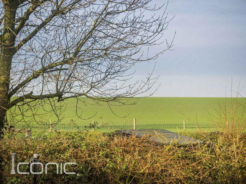 Back Lane Roughton