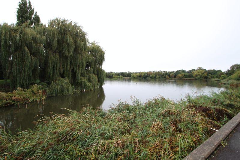 Amhurst Walk