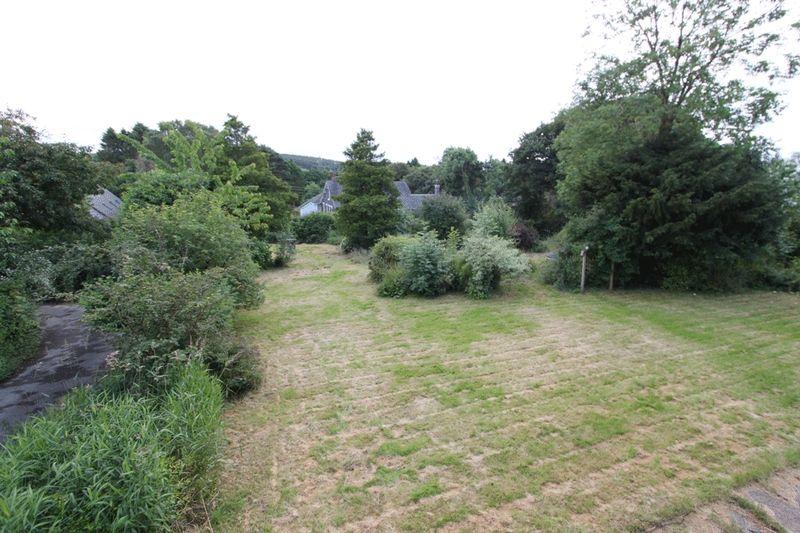new garden pic 8