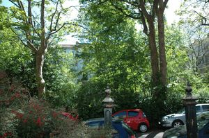 Arlington Villas