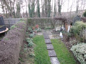 Garden Backing On To Small Copse