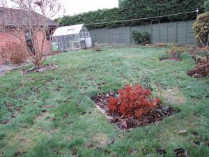 Alternative Garden View