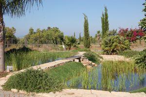 Sitio dos Salicos Salicos