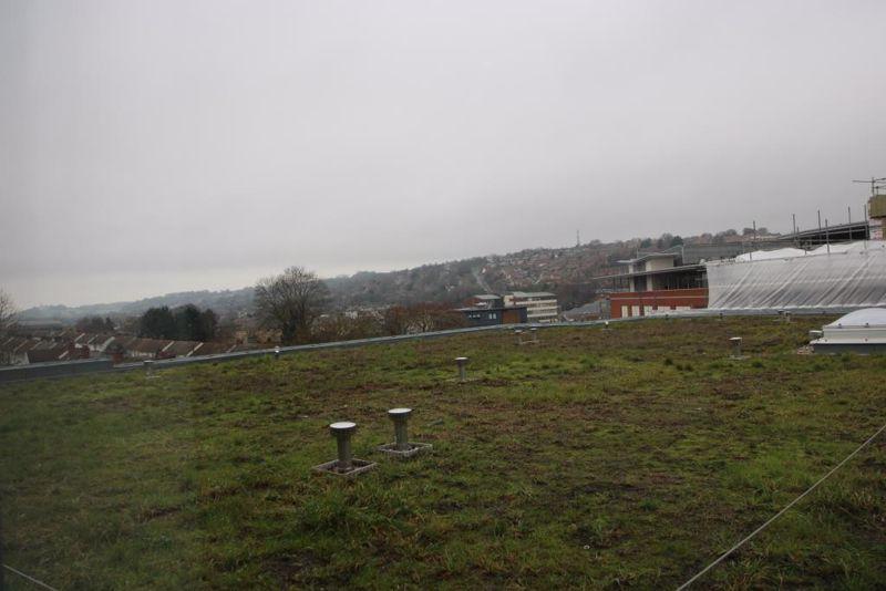Suffield Hill