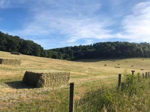 Moor Lane Downley