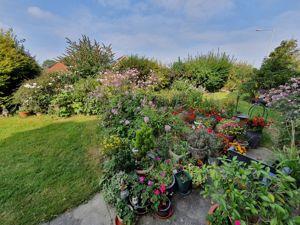 Rosewood Gardens
