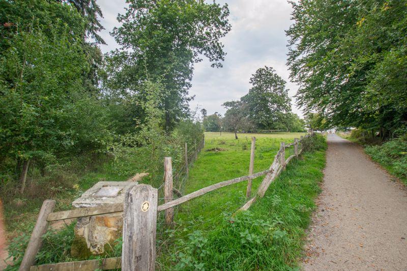 Buxted Park 1