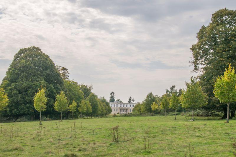 Buxted Park 2