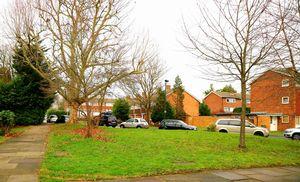Broughton Avenue Ham