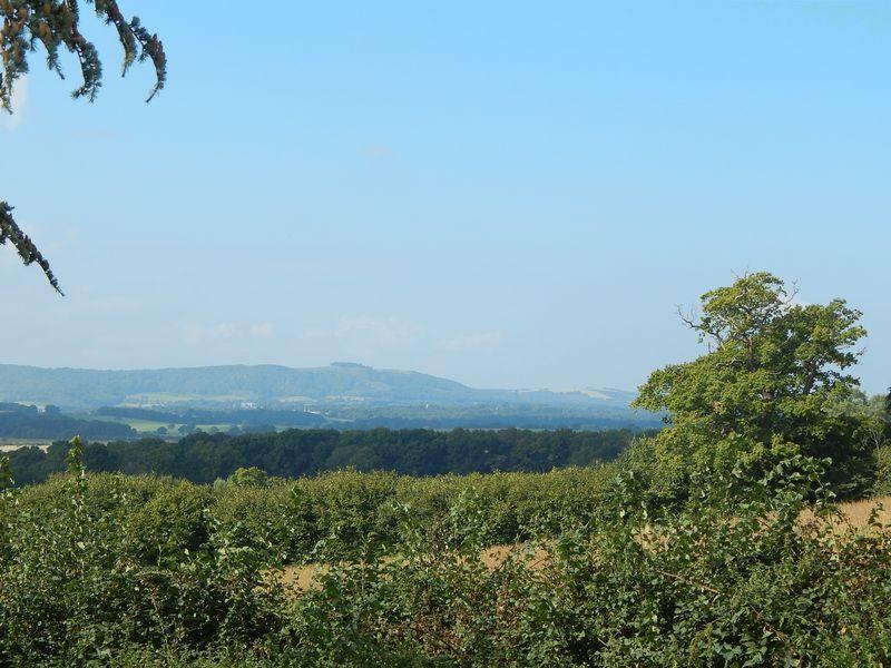Springhills