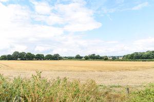 Meadow Drive