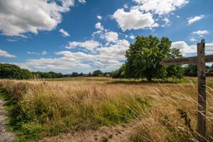Henfield Common North
