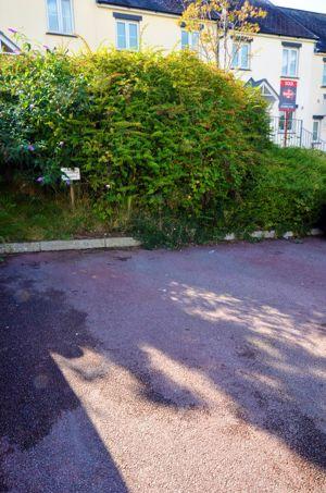 Dennison Road