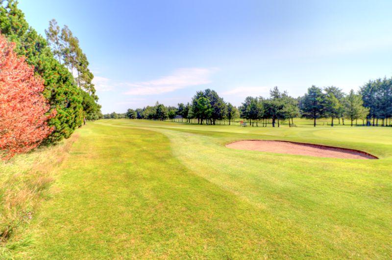 Taylor Green Deer Park