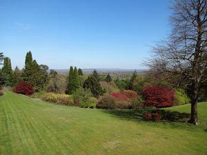 Lythe Hill Park