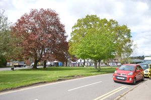St. Christophers Green
