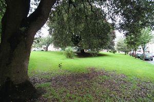 Park Place Clifton