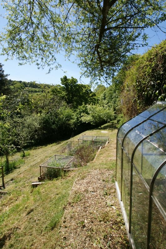 Greenhouse and vegetable plot