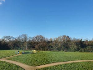 Lyvelly Gardens
