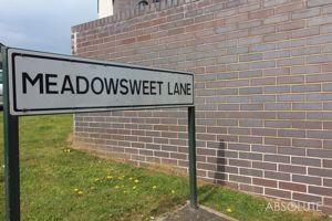 Meadowsweet Lane