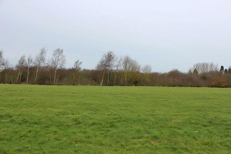 Fieldside Walk