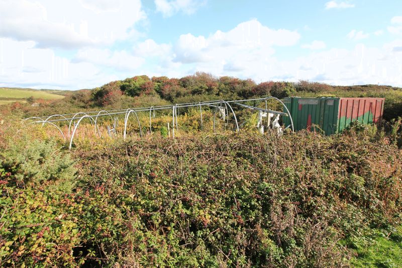 polytunnels from former vineyard