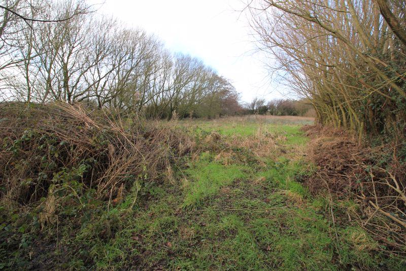 Rear paddock section 2