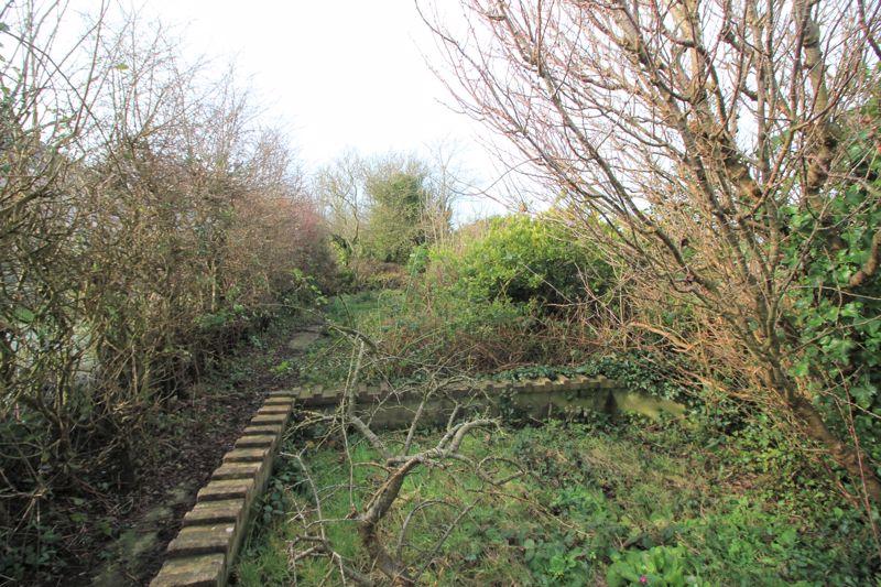 Side Strip of garden