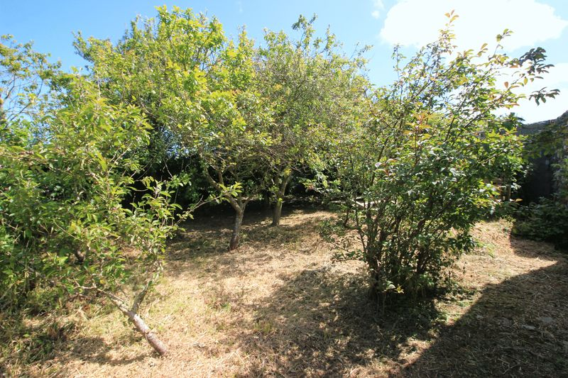 side orchard