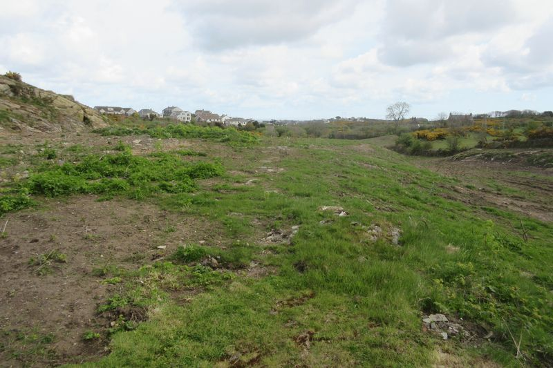 Uncultivated Land