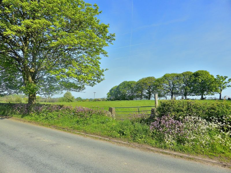 Armshead Road Werrington