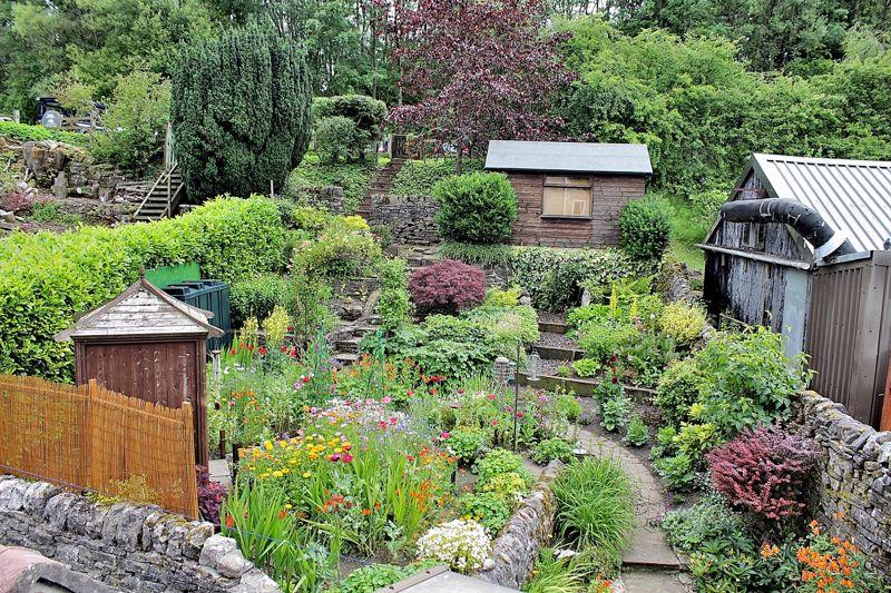 Garden, summer