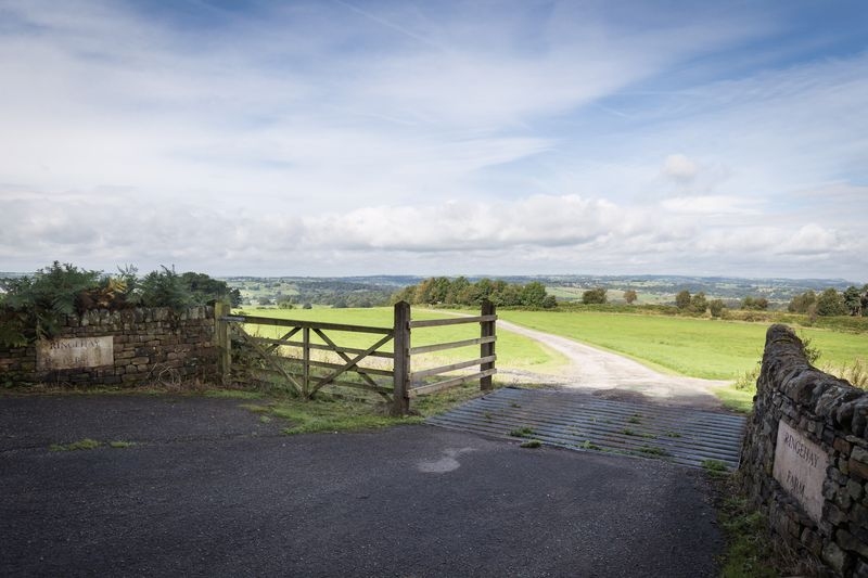Driveway Approach / View