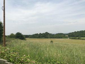 Charlecote Park Newdale