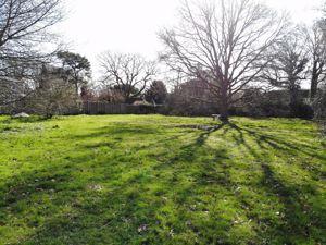 The Green Ewhurst