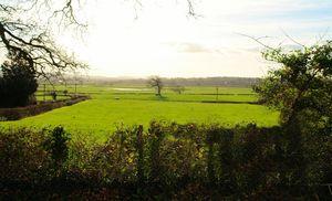 The Grove Wraxall