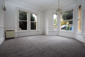 Open plan living/bedroom