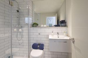 Show flat - shower room