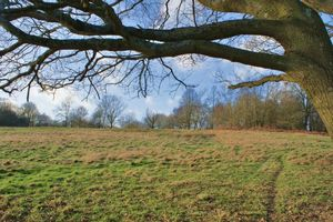 Knowl Hill Common Knowl Hill