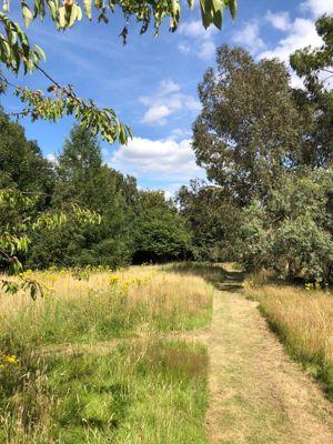 Bath Road Knowl Hill