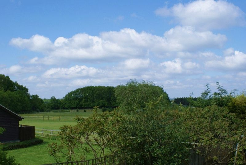 Milley Lane Hare Hatch