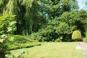 Springfield Park Twyford