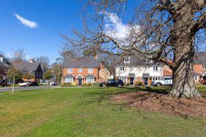 Aubin Wood Emsworth