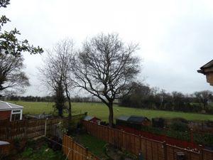 Bramley Orchards
