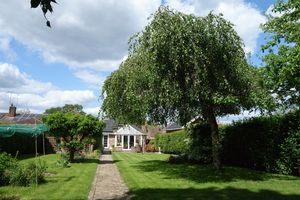 Hazel Road Ash Green